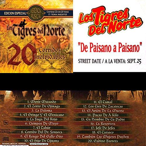 Los Tigres Del Norte - 20 corridos inolvidables - Zortam Music