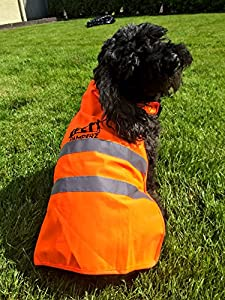 Best Reflective Dog Vest, Pet Coat, Jacket, Apparel for Walking Camping or Hunting with Orange Safety High Visibility Safety That Has Strong Black Plastic Quick Release Buckles and Is Tough and Durable for Medium and Large Sized Dogs.