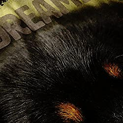 Wellcoda | Daydreamer Dog Face Womens Pup Fantasy Black Hoodie S-2XL