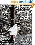 Die Nonne am Schandpfahl - Histor. Ro...