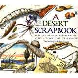 A Desert Scrapbook: Dawn to Dusk in the Sonoran Desert
