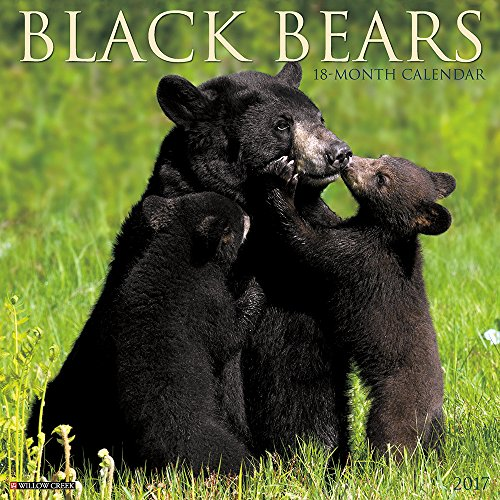 Black Bears 2017 Wall Calendar