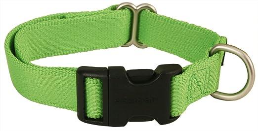 Premier dog collars uk