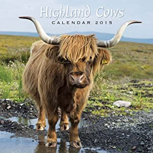2015 Highland Cows - Scotland Calendar