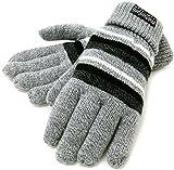 (シンサレート) Thinsulate 手袋 メンズ ニット グローブ ボーダー 高機能中綿素材 5color (Free, ミディアムグレー)