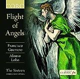 Guerrero/Lobo: Flight of Angel