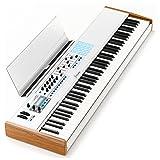 Arturia KeyLab 88 MIDI/USB Hammer-Action Hybrid Keyboard Controller (Color: MultiColored, Tamaño: large)