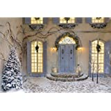 AOFOTO 7x5ft Christmas Eve Backdrop Villa Outdoor Decorated Garland Lanterns Wreath Sere Branches Snow Covered Xmas Tree Stone Floor and Stairs Photography Background Family Events Studio Prop (Color: L BK11013, Tamaño: 7x5ft)
