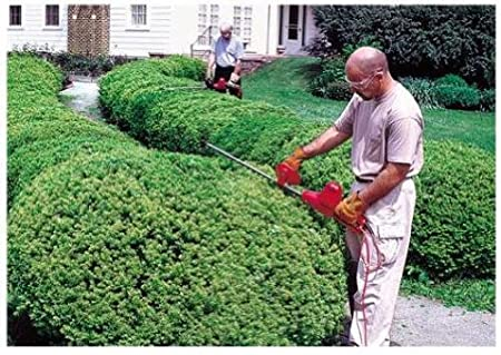 Mantis electric hedge trimmer