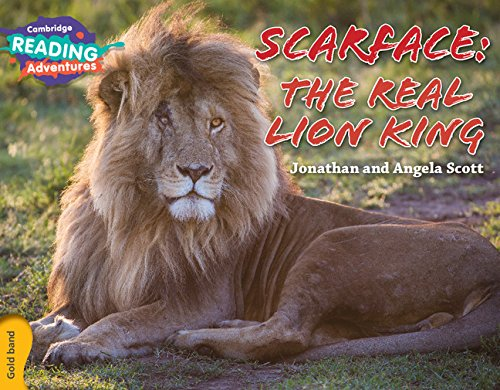 Scarface: The Real Lion King Gold Band (Cambridge Reading Adventures)