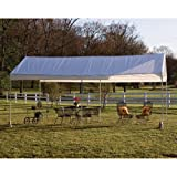 ShelterLogic ShelterLogic 10 x 20 Deluxe All Purpose Canopy Carport, Other Colors, Steel