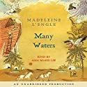 Many Waters (       UNABRIDGED) by Madeleine L'Engle Narrated by Ann Marie Lee