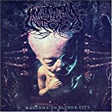 "Welcome to Sludge Cityvon ""Annotations of an Autopsy"""
