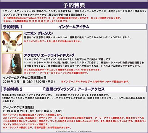ファイナルファンタジーXIV: 漆黒のヴィランズ コレクターズエディションオリジナルPS4用テーマ 配信 - PS4 ゲーム画面スクリーンショット2