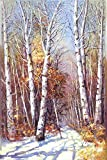 Oil Painting 'Landscape Painting: The Winter Forest', 12 x 18 inch / 30 x 46 cm , on High Definition HD canvas prints is for Gifts And Bed Room, Laundry Room And Powder Room Decoration
