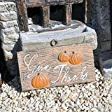 Miniature Fairy Garden Hanging Fall Sign with Hook