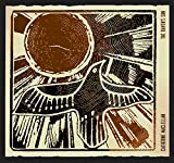 Catherine Maclellan - The Raven's Sun