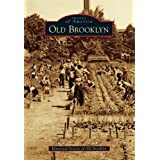Historic City Maps - BROOKLYN OHIO (OH) LANDOWNER MAP 1876 - Matte Art Paper