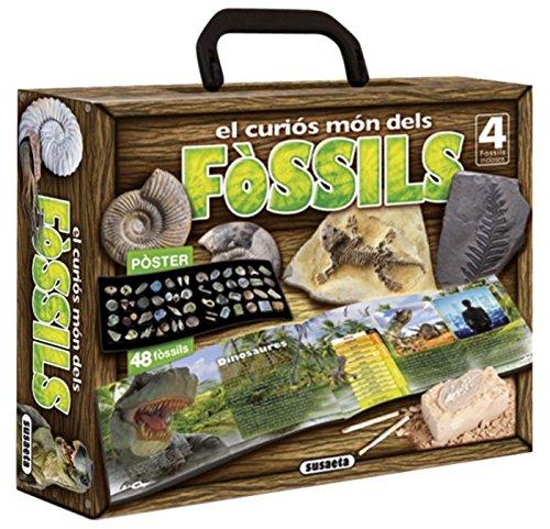 el-curios-mon-dels-fossils-joven-explorador