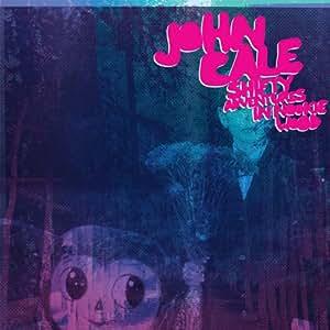 Shifty Adventures in Nookie... [Vinyl LP]