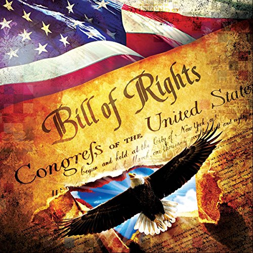 The Bill of Rights 1000 Piece Jigsaw Puzzle by Sunsout Inc.