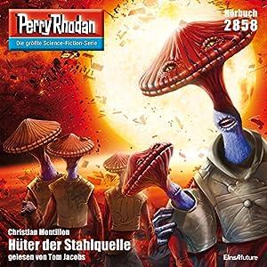Hüter der Stahlquelle (Perry Rhodan 2858) Hörbuch