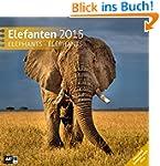Elefanten 30 x 30 cm 2015