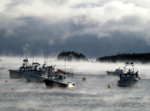 How to catch a lobster in down east maine review from the for Lobster fishing in maine