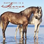Happiness is a Horse 2016 Calendar