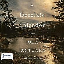 A Desolate Splendor | Livre audio Auteur(s) : John Jantunen Narrateur(s) : Graham Winton