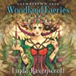 Llewellyn's 2014 Woodland Faeries (Calendars)