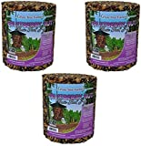 Pine Tree Farm Fruit Berry Nut Classic Seed Log, 32-Ounce (Pack of 3)