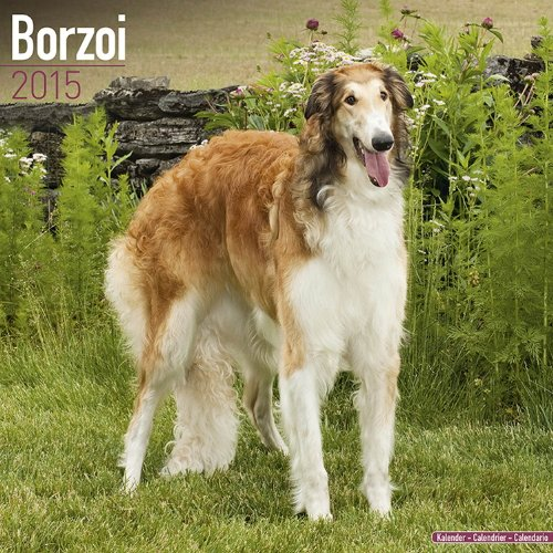 Borzoi Calendar - Just Borzoi Calendar - 2015 Wall calendars - Dog Calendars - Monthly Wall Calendar by Avonside