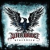 Blackbird ~ Alter Bridge