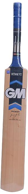 GM Octane F2 Premier Kashmir Willow Cricket Bat, Short Handle