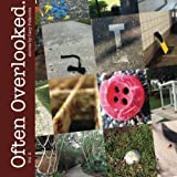 img - for Often Overlooked. Vol. 2 (Volume 2) by Polkovitz, Cary (2013) Paperback book / textbook / text book