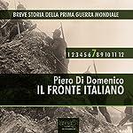 Breve Storia della Prima Guerra Mondiale, Vol. 7 [Short History of WWI, Vol. 7]: Il Fronte Italiano [the Italian front] | Piero Di Domenico