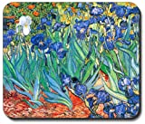 Van Gogh Irises Mouse Pad