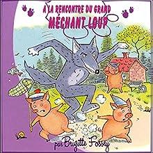 À la rencontre du grand méchant loup | Livre audio Auteur(s) :  auteur inconnu Narrateur(s) : Brigitte Fossey