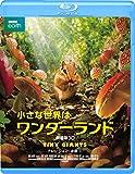 小さな世界はワンダーランド/劇場版3D[Blu-ray/ブルーレイ]