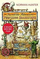The Incredible Adventures of Professor Branestawm (Vintage Classics)