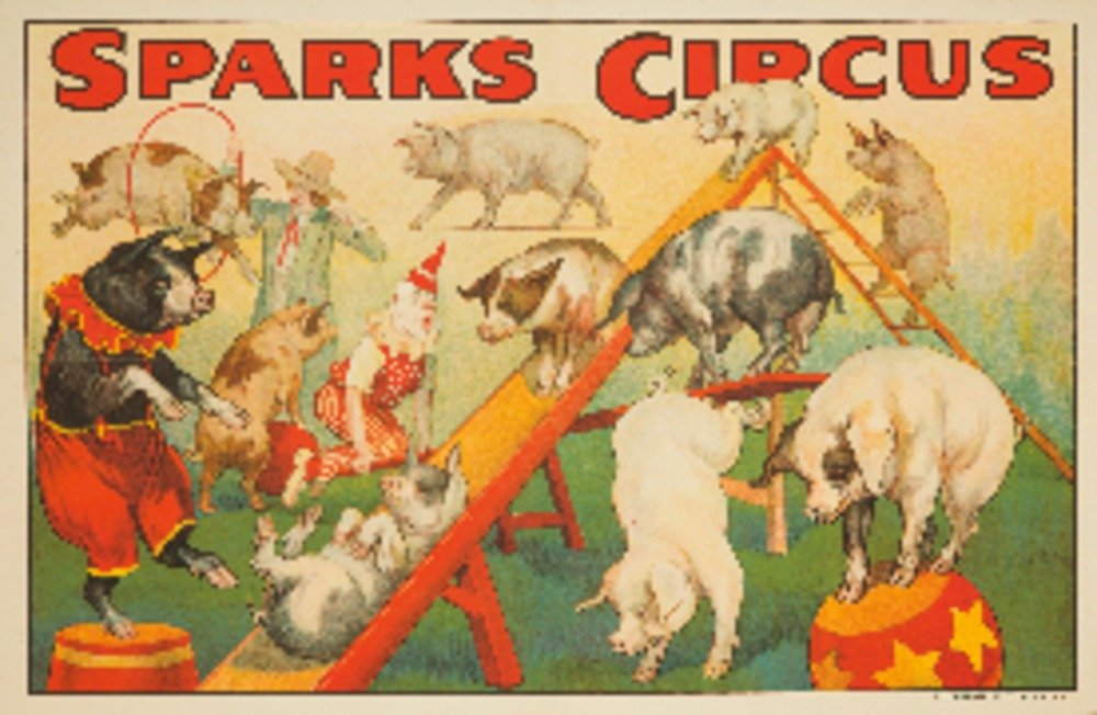 Sparks Circus - Pigs Vintage Poster USA c. 1925 (16x24 Collectible Giclee Gallery Print, Wall Decor Travel Poster) 0