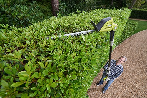 ryobi opt1845 one 18 v pole hedge trimmer garden rattan furniture. Black Bedroom Furniture Sets. Home Design Ideas