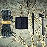 DeVida Solar String Lights Warm White 120 Mini LED Strands for Outdoor Christmas Tree, Wedding ~ Waterproof Adjustable Auto Sensor with Accessories