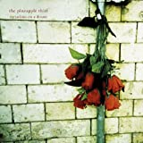 Variations on a Dream by PINEAPPLE THIEF (2011-11-21)