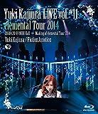 Yuki Kajiura LIVE vol.#11 elemental Tour 2014.4.20@NHK Hall + Making of elemental Tour 2014 [Blu-ray]