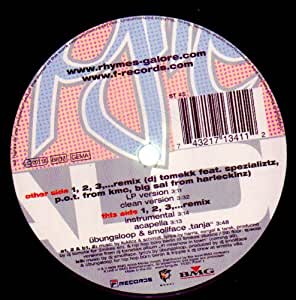 DJ Tomekk vs. Grandmaster Flash Feat. Afrob , Flavor Flav , MC Rene - 1, 2, 3,... Rhymes Galore (From New York To Germany)