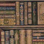 Wallpaper Designer Library Bookshelves Brown Green Red Gold & Black Blue