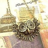 Vintage Owl Necklace Long Pattern Necklace Coat Chain, Gift Idea