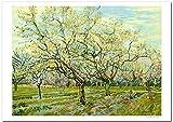 世界の名画 ゴッホ 白い果樹園 ジークレー技法 高級ポスター (B2/728ミリ×515ミリ)
